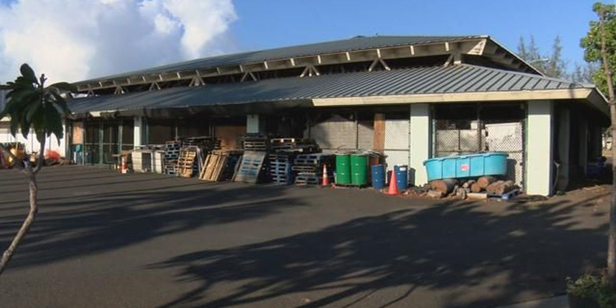 Some worry plans for Kewalo cultural center could clog up park space