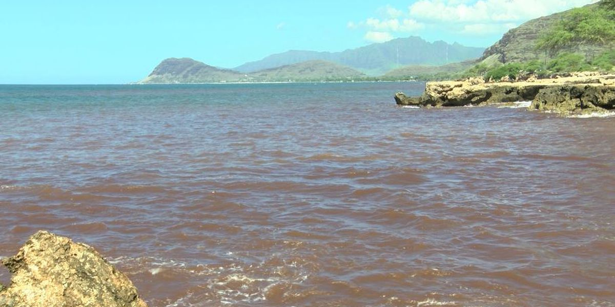 Brown water advisory posted for 5-mile stretch of west Oahu coastline
