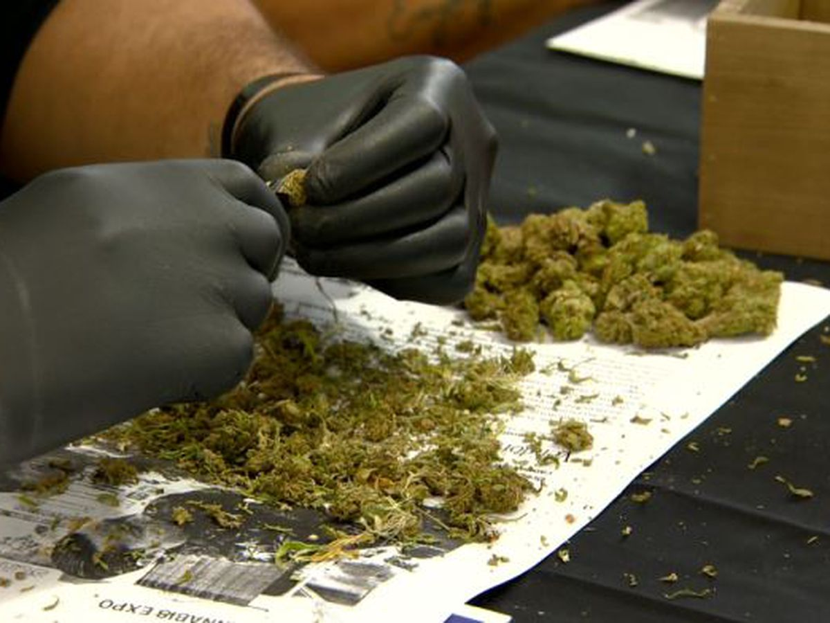 2 more medical marijuana dispensaries given the green light for business