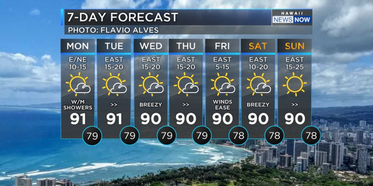 Forecast: Trade winds to hold through the week