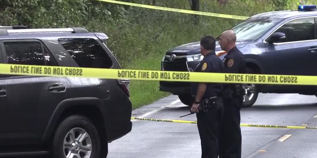 Woman fatally shot by Big Island police after pointing rifle at officers