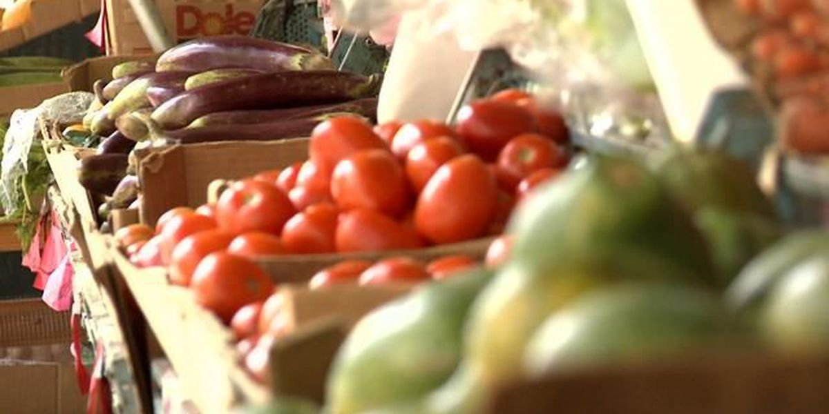 Big Island authorities plan crackdown on agricultural theft
