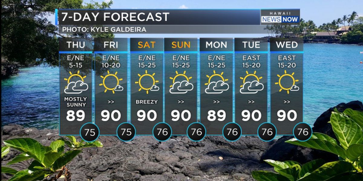 Forecast: Stronger trade winds heading in for the weekend