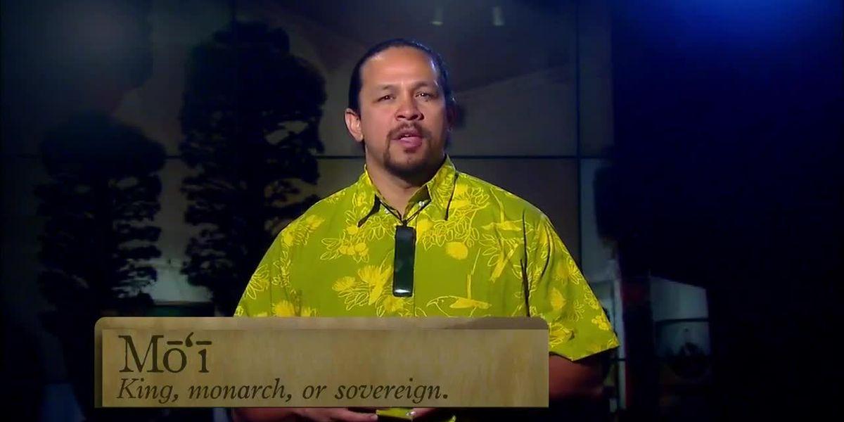Hawaiian Word of the Day: Mo'i