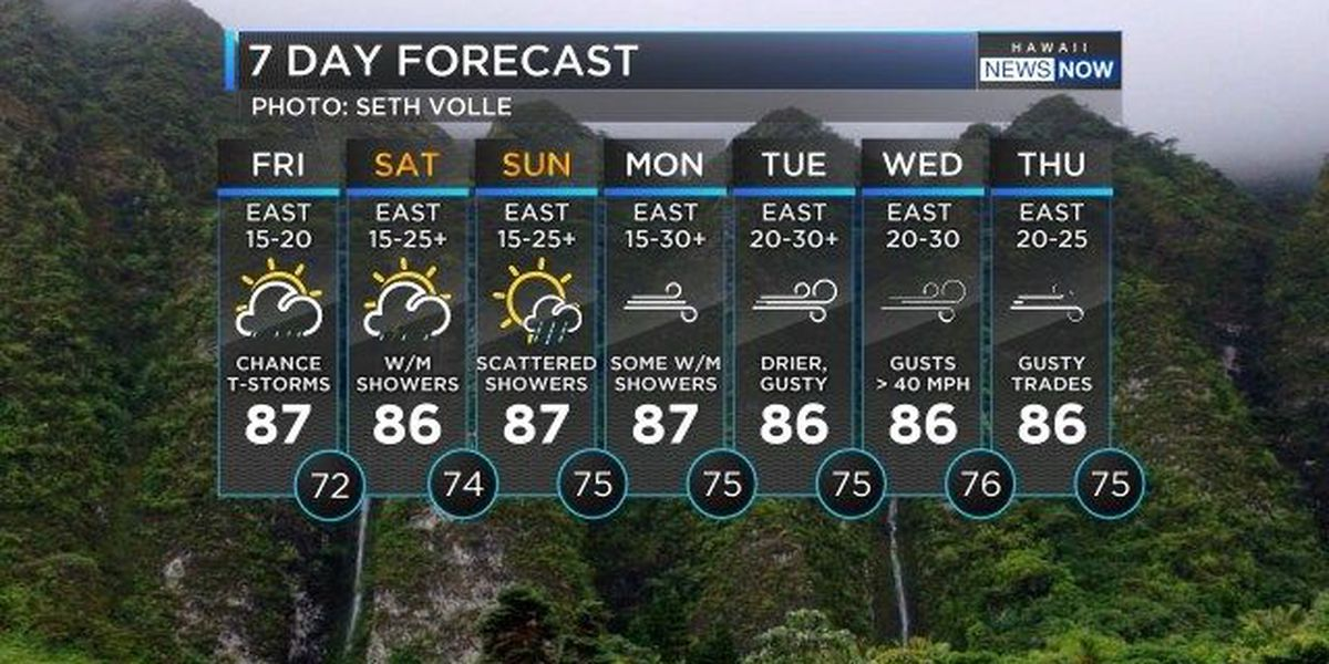 Forecast: Strong winds, wet weather expected as weekend begins