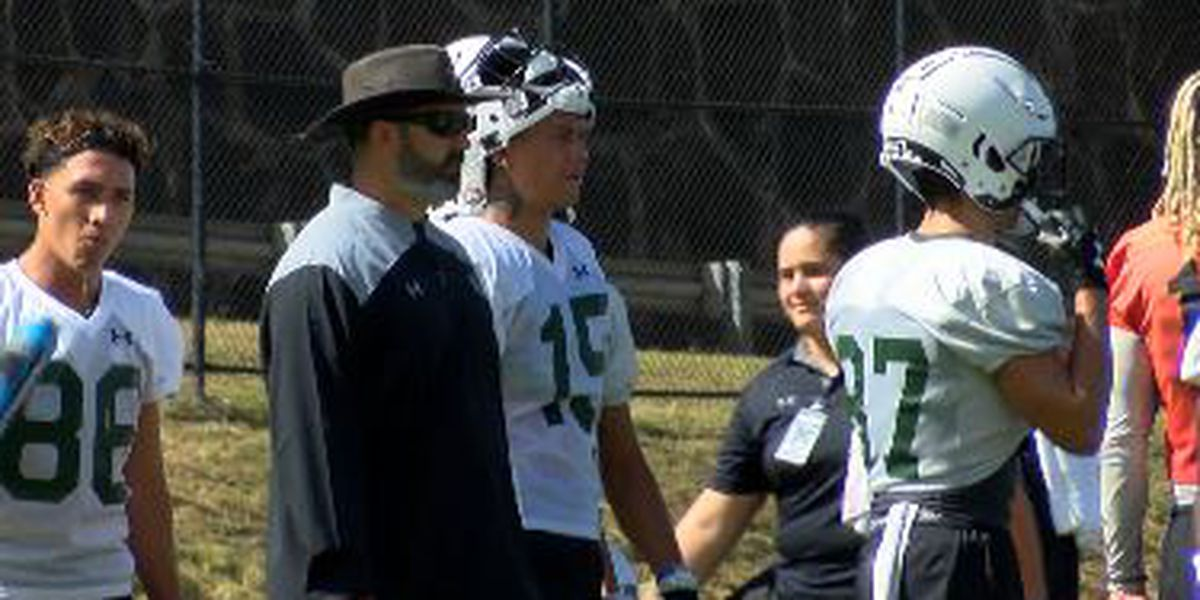 How Rolovich resurrected the 'Bows and turned Hawaii into 'Pride Rock'