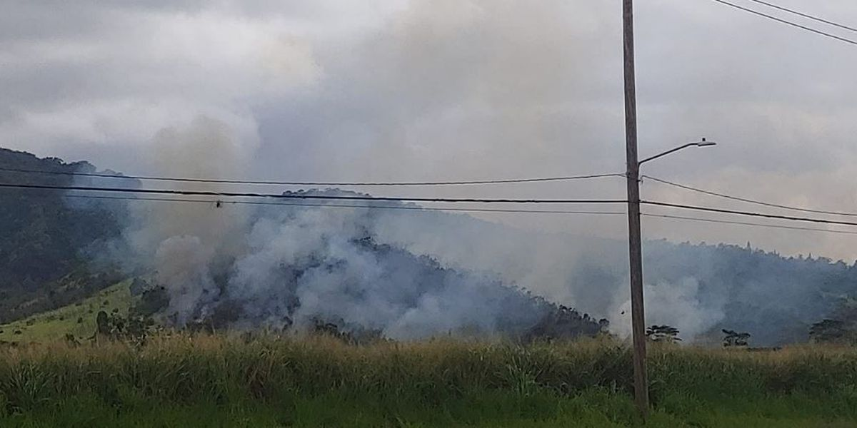 HFD battles a growing brush fire in Central Oahu