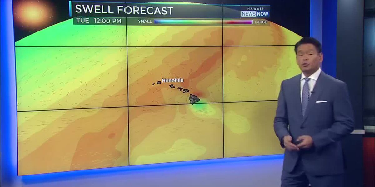 Forecast: Another round of big surf, with continued light winds