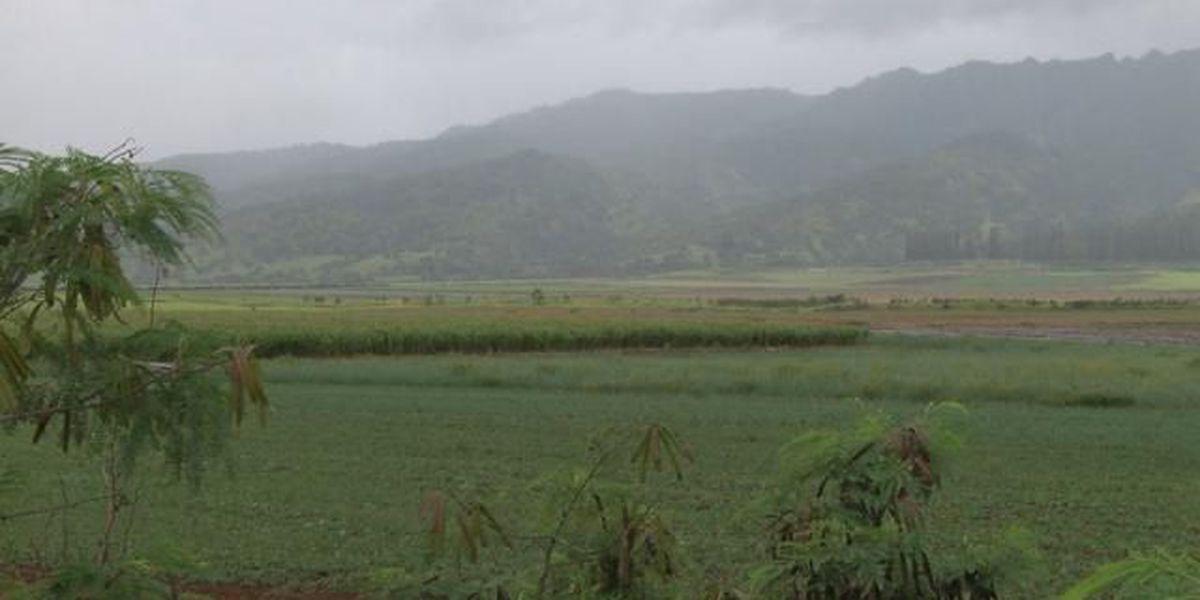 EPA slaps Terminix with big fines for pesticide violations on Kauai