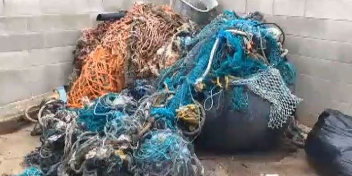 Rise in reports of abandoned fishing nets washing up in Hawaii