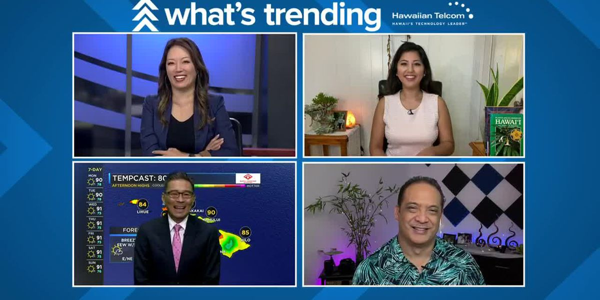Trending: JLo may buy NY Mets, Tiger King roars back and Q&A from Hawaii on AGT