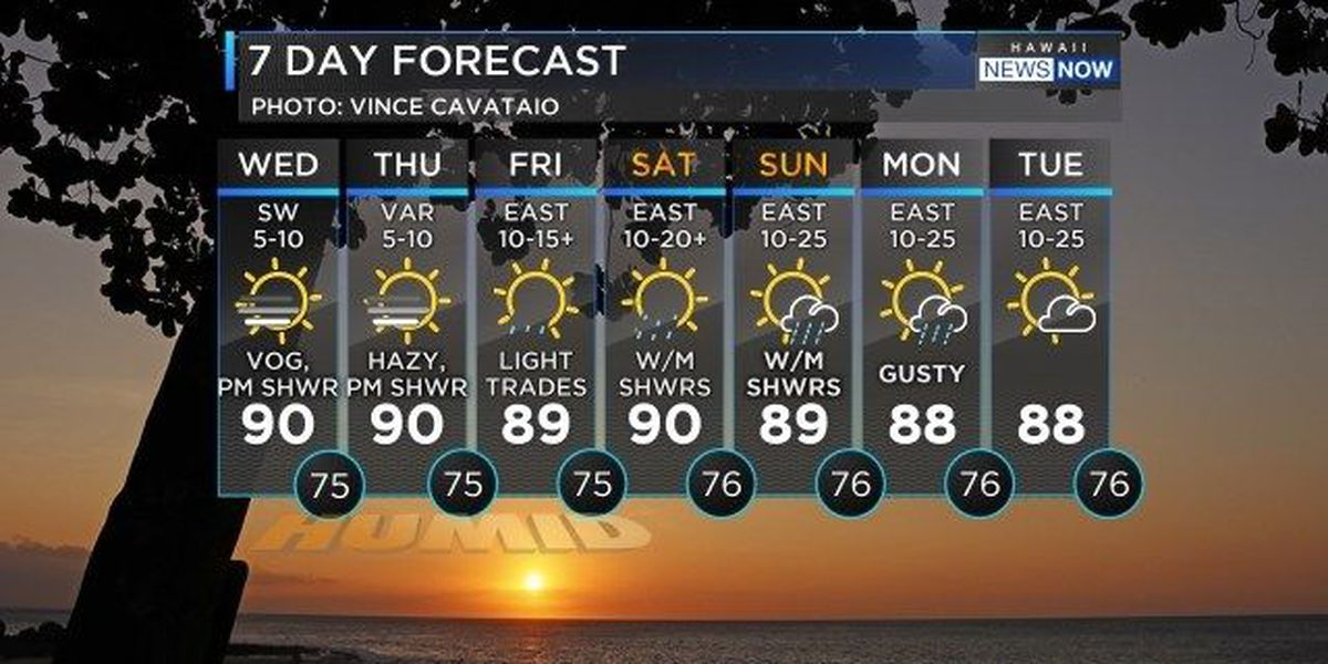 Forecast: Another humid, voggy day with afternoon pop-up showers