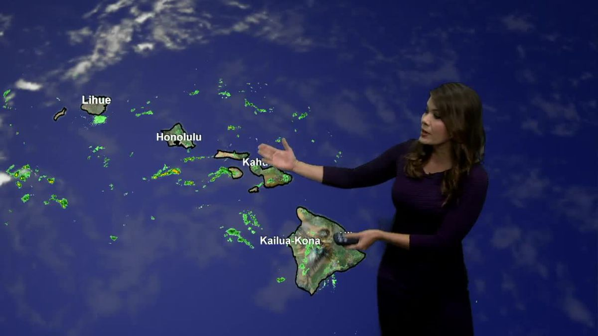 Trade winds are in control