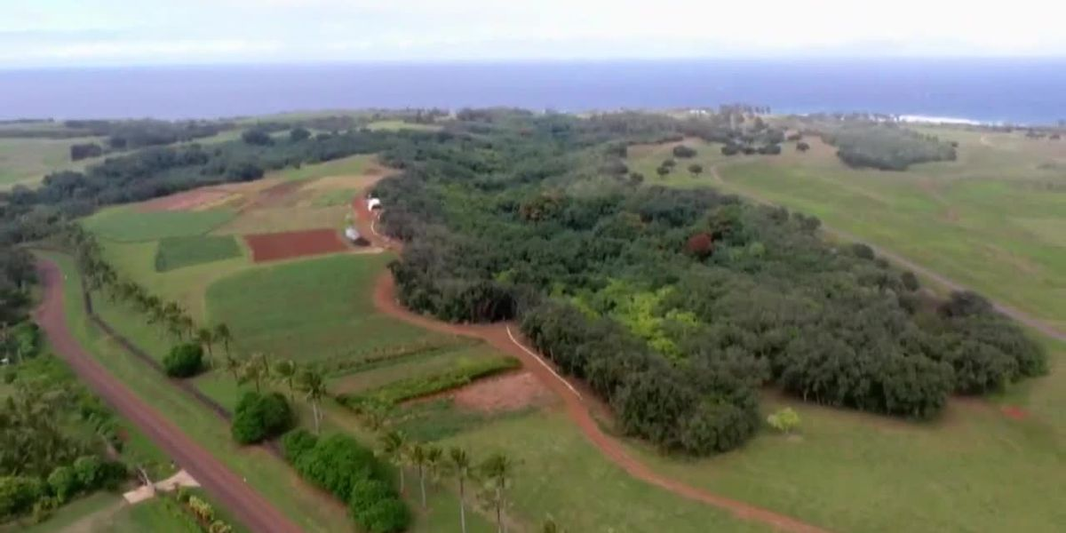 After years-long dispute, kuleana land parcels on Facebook CEO's Kauai estate sold at auction