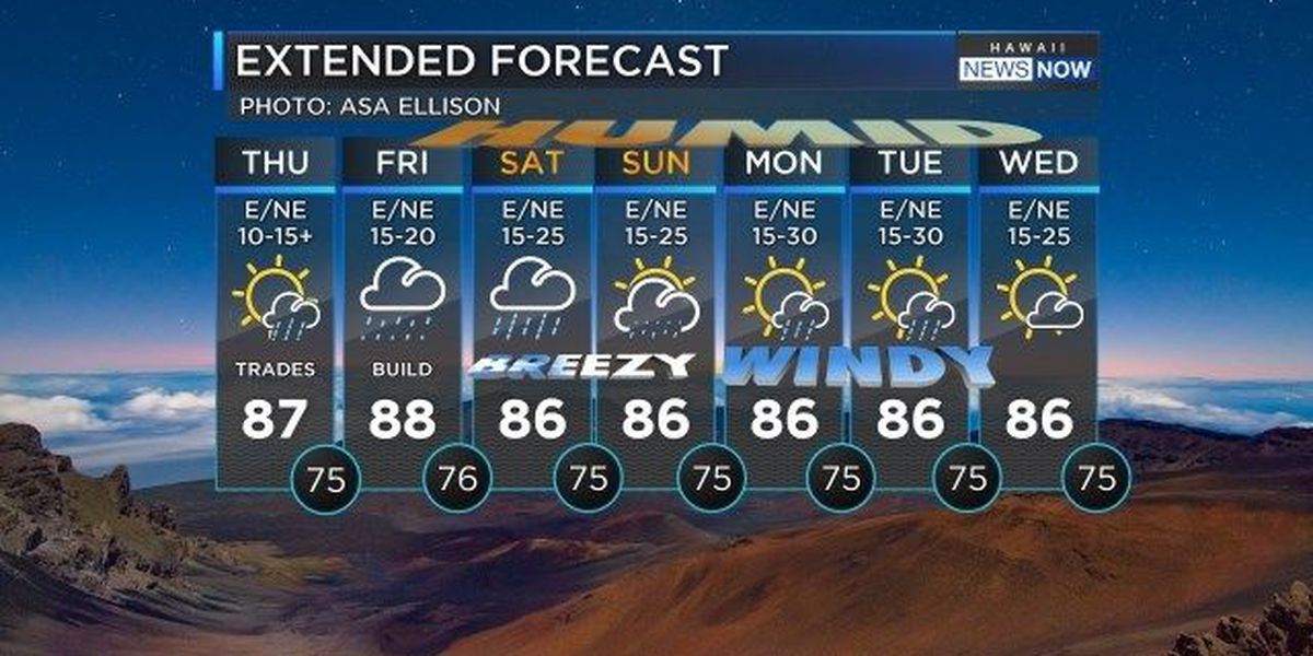 Forecast: Wetter, windier weather over the next few days
