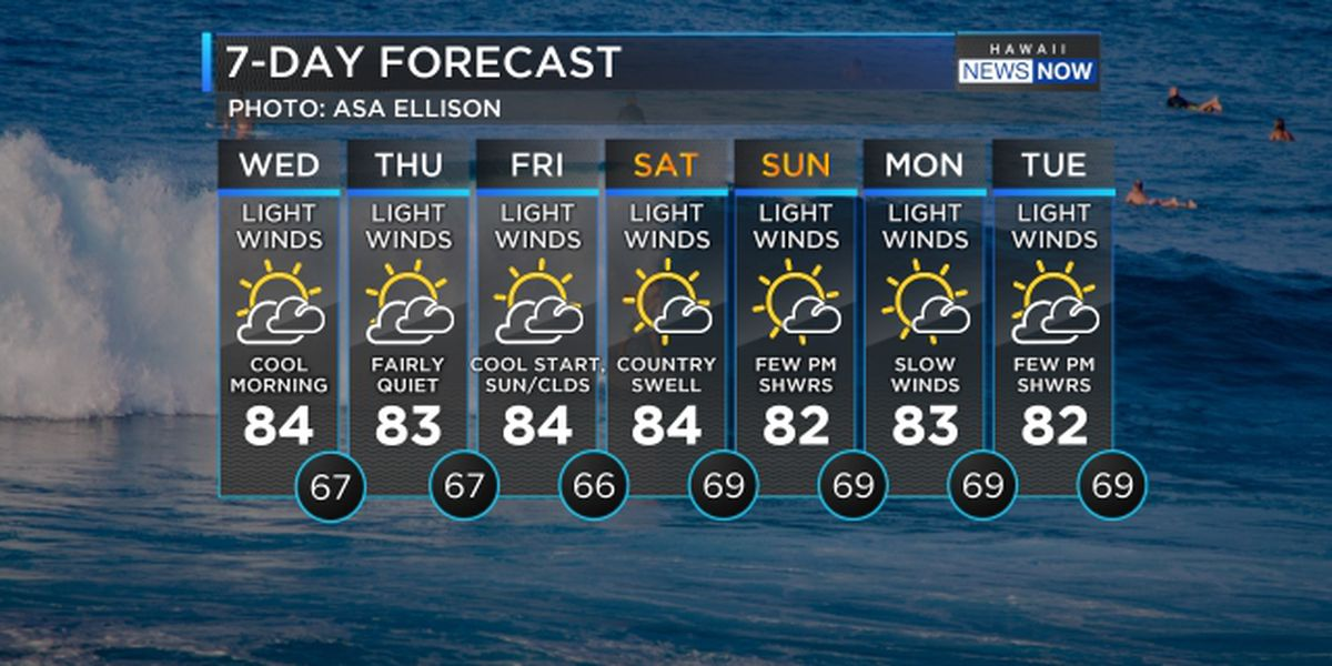 Forecast: Light winds to hold through the weekend, more big surf on the way