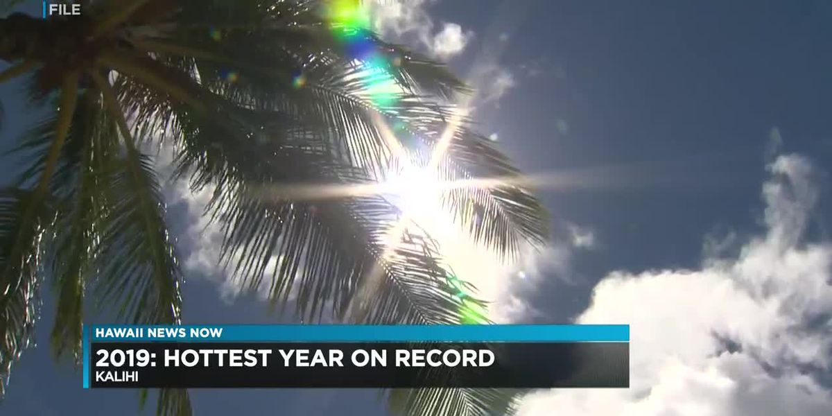 2019 was Oahu's hottest on record. Here's how the city wants to beat the heat