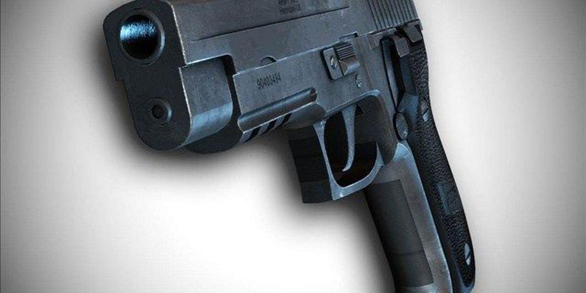 Gov. Jerry Brown signs California gun restriction