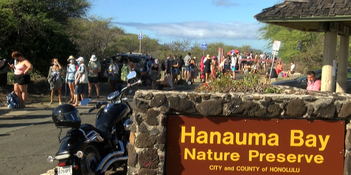 Reversing course, city will once again allow walk-in entry at Hanauma Bay