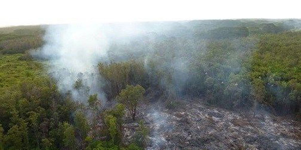 Puna lava flow projected to reach Pahoa in 2 weeks