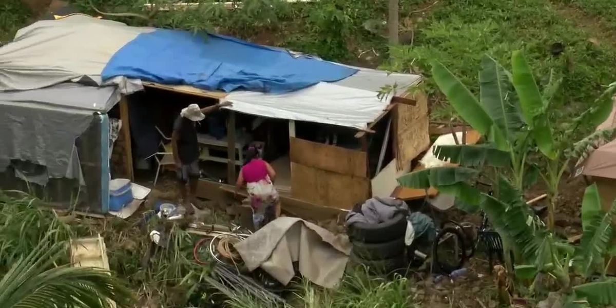 Homeless squatters develop a new village in Kalihi Valley, which the city says it can't evict.