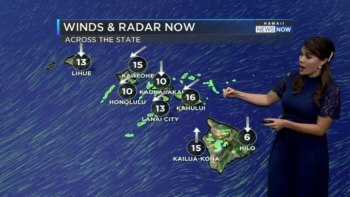 Trade winds for now but not for long