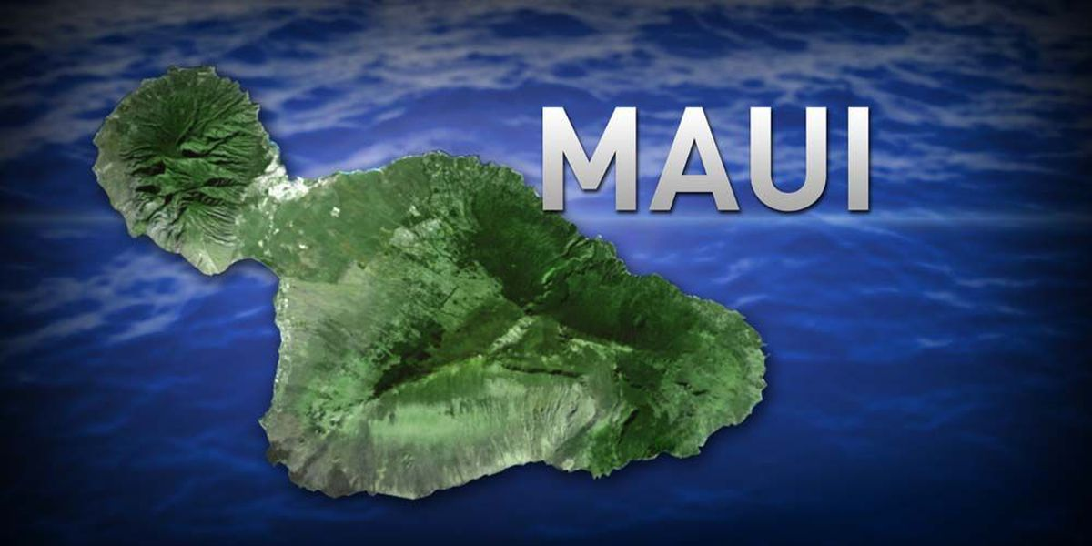 Visitors unharmed after rental car plunges 40 feet off a Maui cliff