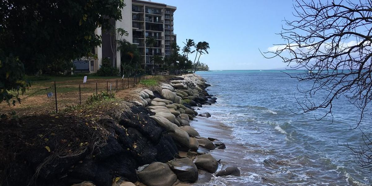Controversial seawall plan divides West Maui community
