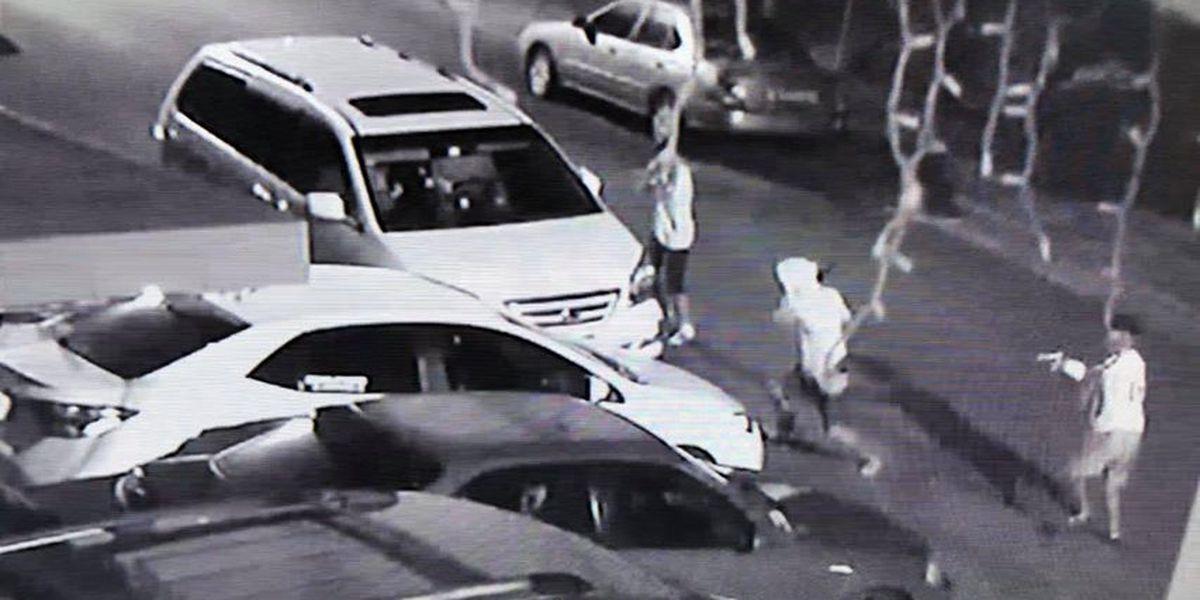 'Bang, bang!': Vandals shoot at, take bat to car in apparent targeted attack