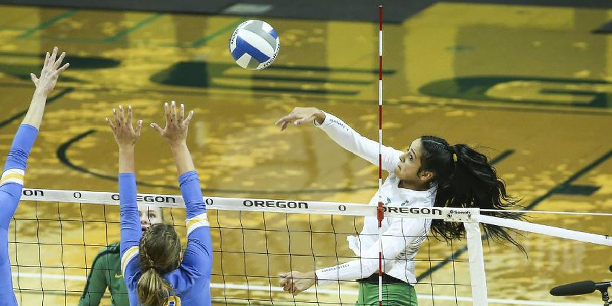 Wahine volleyball adds Van Sickle as junior transfer from Oregon
