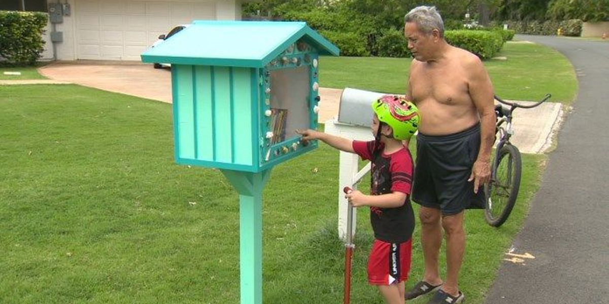 'Little library' in Kailua appears to have been stolen
