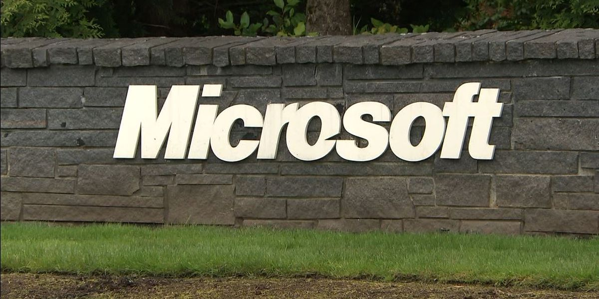 Microsoft says Iranian hackers targeted security conference attendees