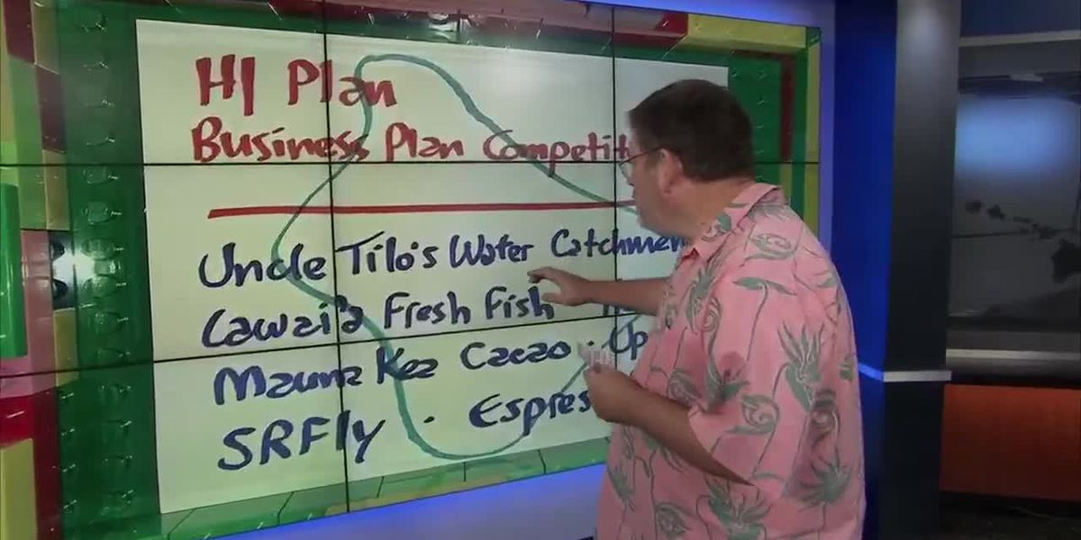 Business Report: Businesses on Big Island