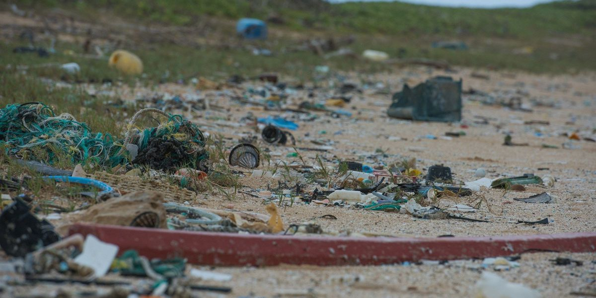 Piles of plastic washing ashore along pristine Kahuku shoreline