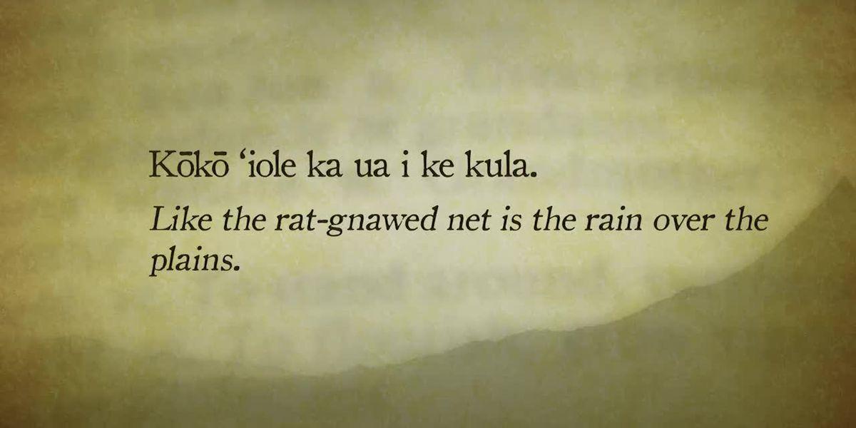 Hawaiian Word of the Day: Koko