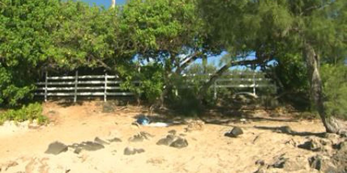 Tourist-weary residents erect fence on North Shore