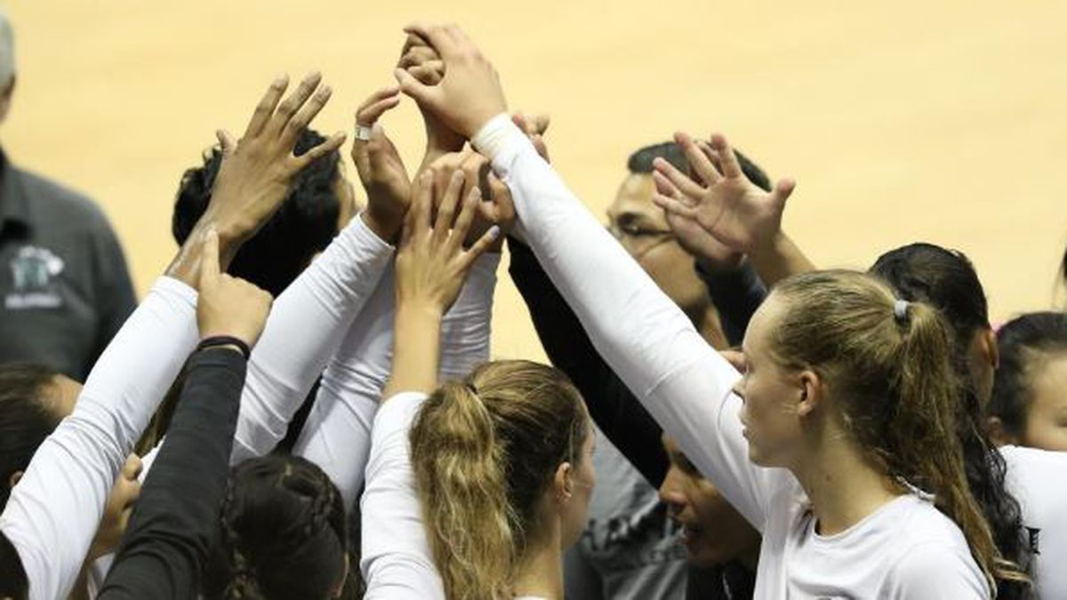 UH to combine Wahine beach and indoor volleyball, due to the financial fallout of the pandemic