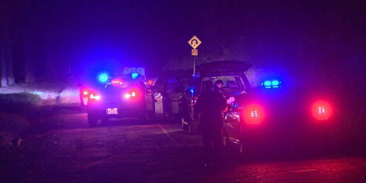 Police searching for man who crashed a stolen car on Tantalus Drive