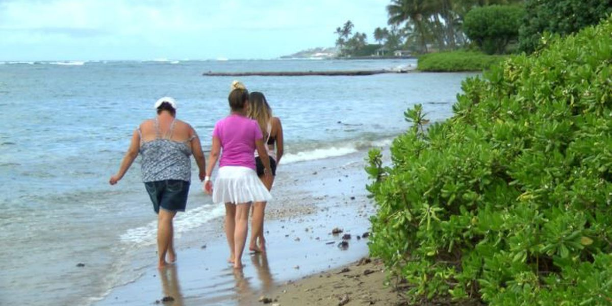 Study to deter Maui beach erosion finds offshore sand