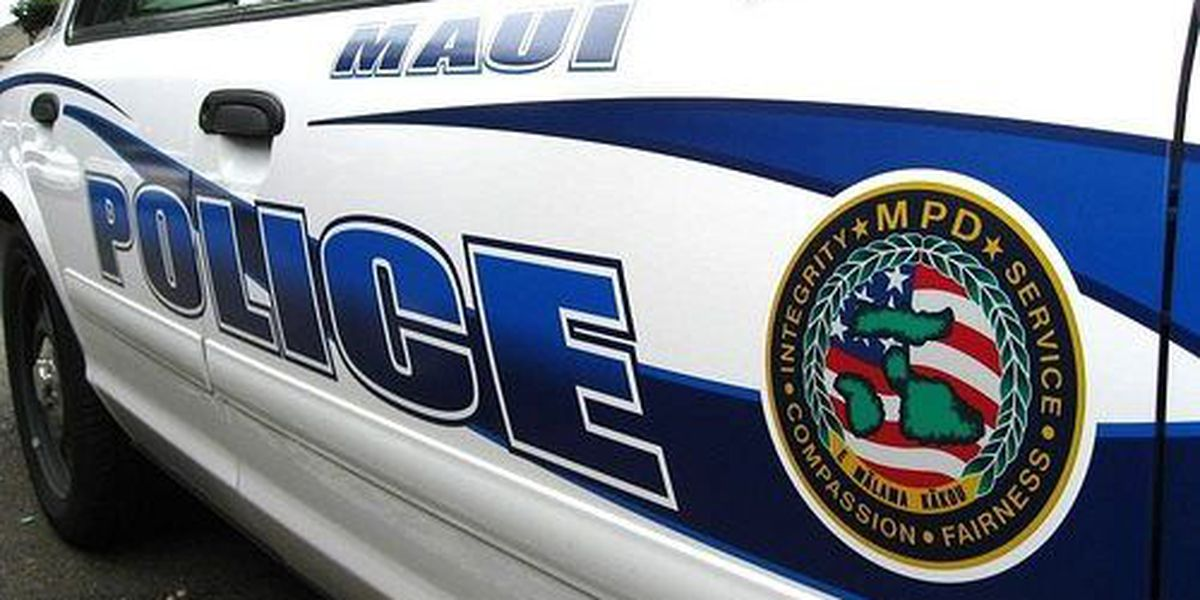 Maui police officer charged in domestic abuse case