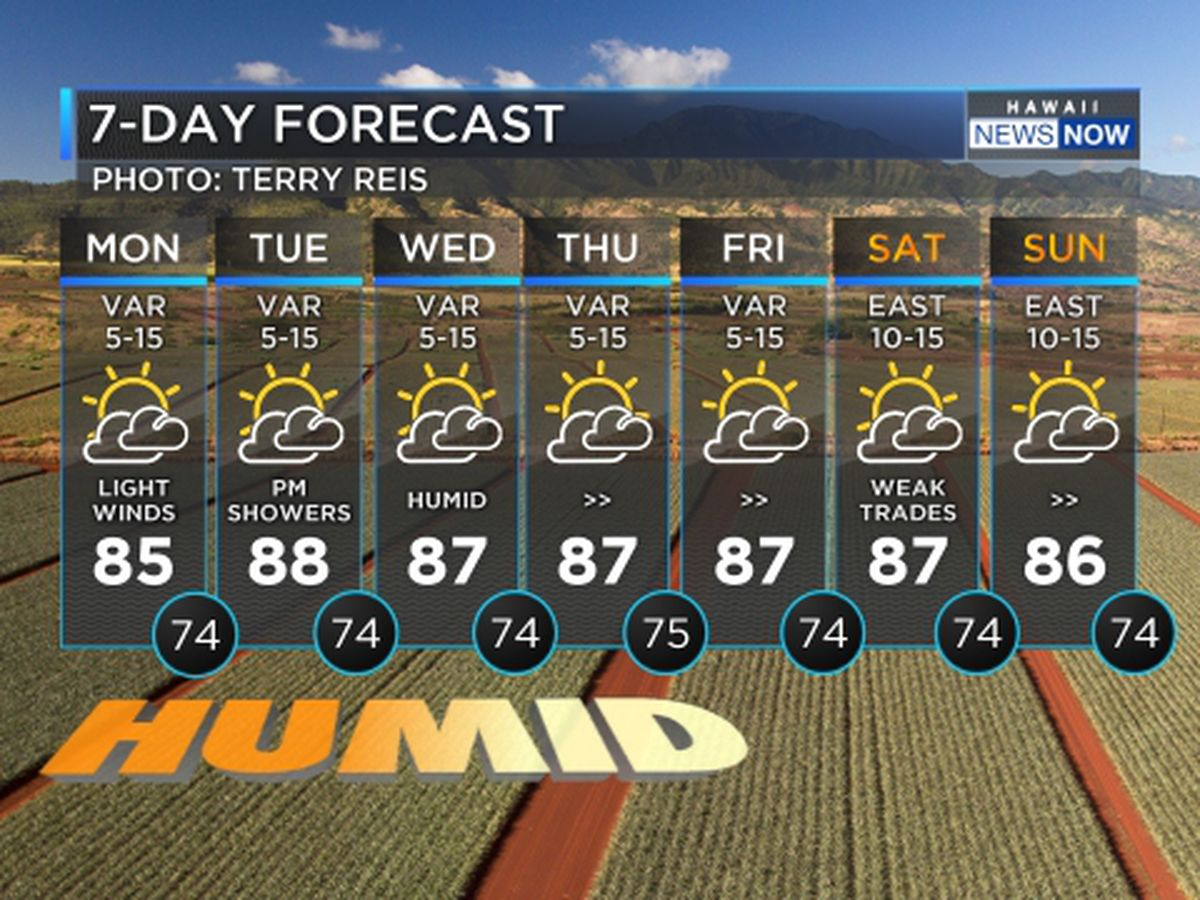Forecast: Get ready for hot, muggy, uncomfortable conditions