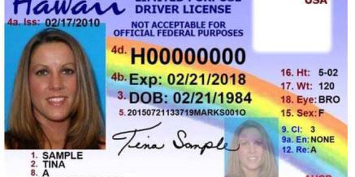 New driver's license could put 40K more residents behind the wheel