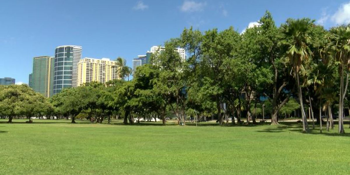 A popular Oahu gathering spot could soon get an inclusive children's playground