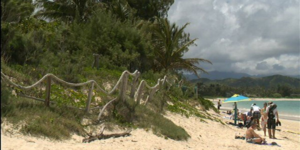 Lawmakers seek solutions for Hawaii's disappearing beaches
