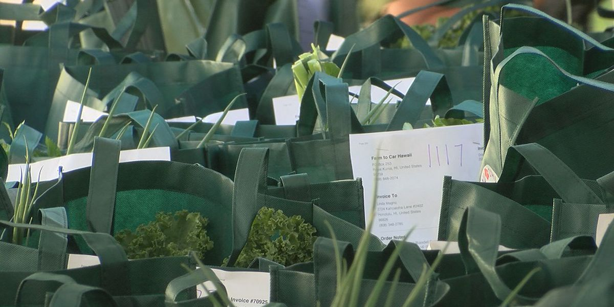 'Farm to Car' program provides safe option to buy local produce while helping farmers