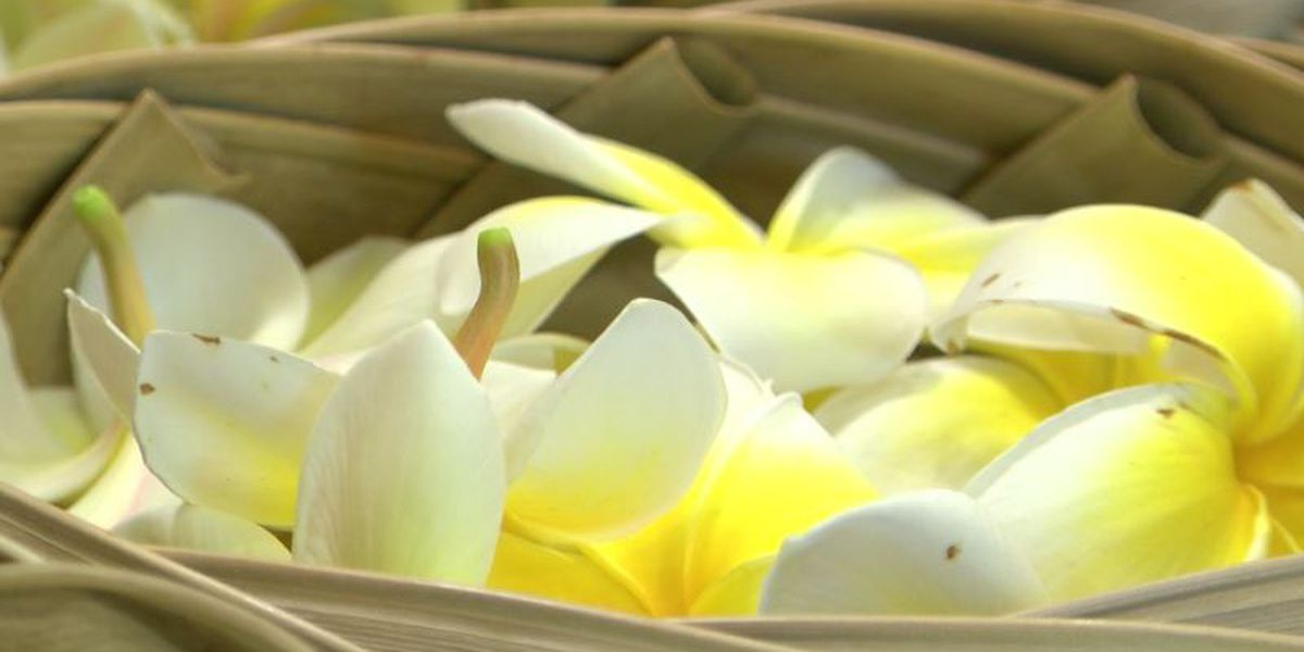 Got flowers? Lei, ti leaves needed for annual memorial day celebrations