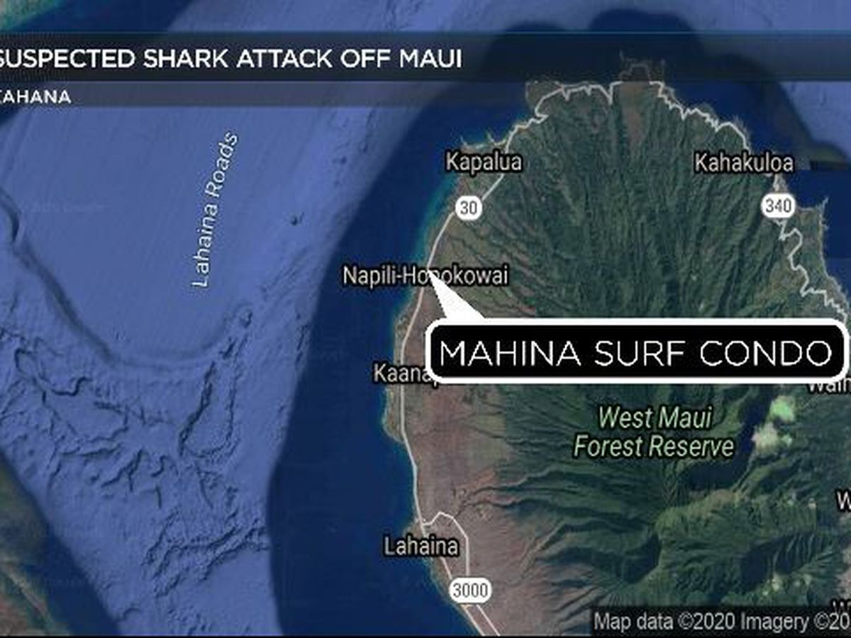 California woman hospitalized after suspected shark attack off Maui