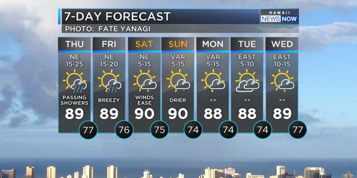 Forecast: Breezy, damp conditions to persist through Friday