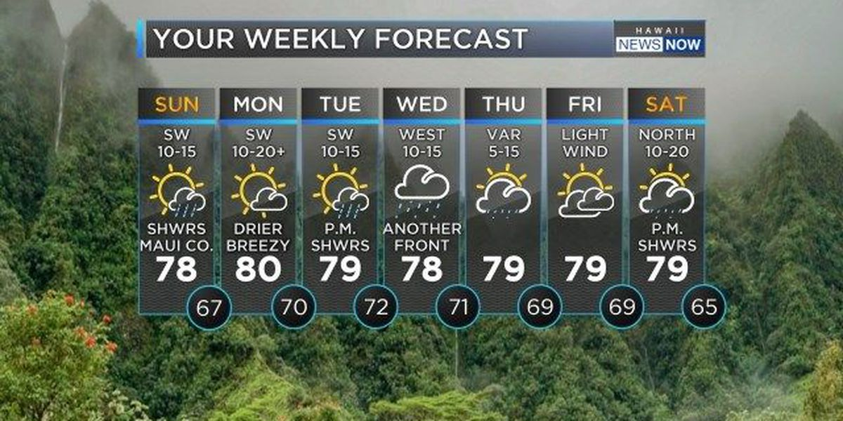 Forecast: Drier conditions and sunnier skies for Sunday