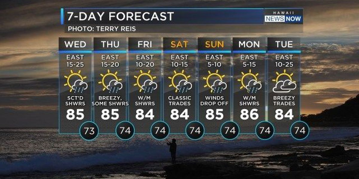 Forecast: Windy and occasionally wet for your Wednesday